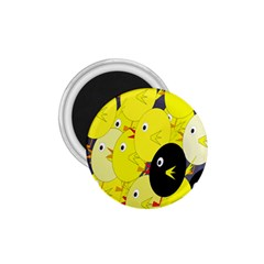 Yellow flock 1.75  Magnets