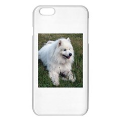 Samoyed Laying In Grass iPhone 6 Plus/6S Plus TPU Case