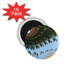 Sunraypil 1.75  Magnets (10 pack)