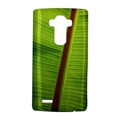 Ensete Leaf Lg G4 Hardshell Case