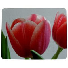 Red   White Tulip Flower Jigsaw Puzzle Photo Stand (rectangular)