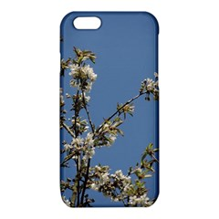 White Cherry flowers and blue sky iPhone 6/6S TPU Case