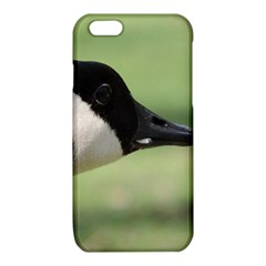 Goose, black and white iPhone 6/6S TPU Case
