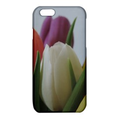 Colored by Tulips iPhone 6/6S TPU Case
