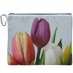 Tulip spring flowers Canvas Cosmetic Bag (XXXL)