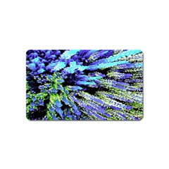 Colorful Floral Art Magnet (Name Card)