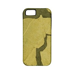 Stylish Gold Stone Apple iPhone 5 Classic Hardshell Case (PC+Silicone)
