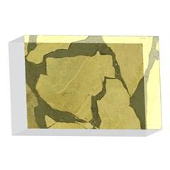 Stylish Gold Stone 4 x 6  Acrylic Photo Blocks