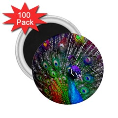 3d Peacock Pattern 2.25  Magnets (100 pack)