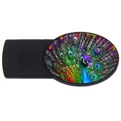 3d Peacock Pattern USB Flash Drive Oval (1 GB)