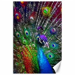 3d Peacock Pattern Canvas 24  x 36