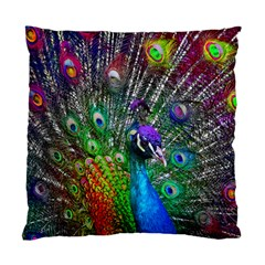 3d Peacock Pattern Standard Cushion Case (Two Sides)