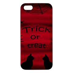 Trick or treat - black cat Apple iPhone 5 Premium Hardshell Case