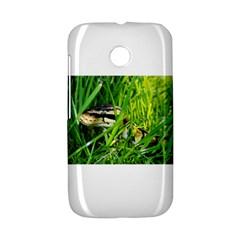 Ball Python In Grass Motorola Moto E