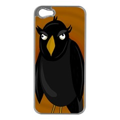 Halloween - old black rawen Apple iPhone 5 Case (Silver)