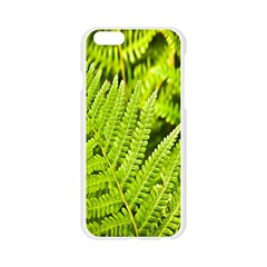 Fern Nature Green Plant Apple Seamless iPhone 6/6S Case (Transparent)