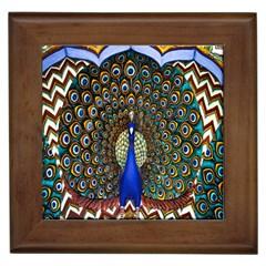The Peacock Pattern Framed Tiles