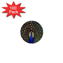 The Peacock Pattern 1  Mini Buttons (100 pack)