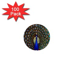 The Peacock Pattern 1  Mini Magnets (100 pack)