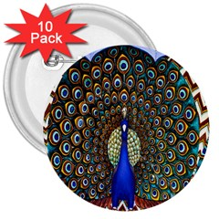 The Peacock Pattern 3  Buttons (10 pack)