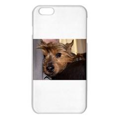 Norwich Terrier Chillin iPhone 6 Plus/6S Plus TPU Case