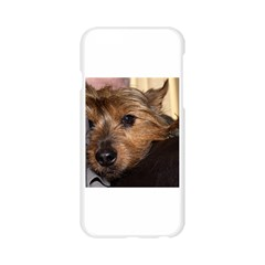 Norwich Terrier Chillin Apple Seamless iPhone 6/6S Case (Transparent)