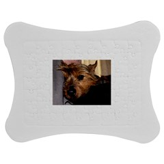 Norwich Terrier Chillin Jigsaw Puzzle Photo Stand (Bow)
