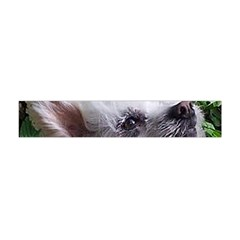 Chinese Crested Flano Scarf (Mini)