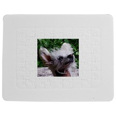 Chinese Crested Jigsaw Puzzle Photo Stand (Rectangular)