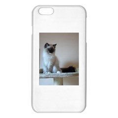 Ragdoll Kitten iPhone 6 Plus/6S Plus TPU Case