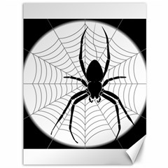 Spider Web Spider Web Insect Canvas 36  x 48