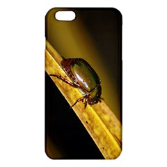 Insect  iPhone 6 Plus/6S Plus TPU Case
