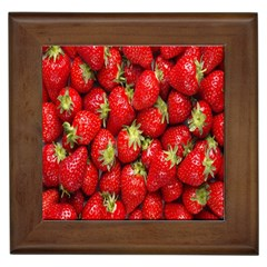 Red Fruits Framed Tiles