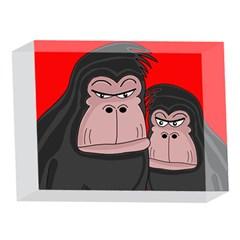 Gorillas 5 x 7  Acrylic Photo Blocks