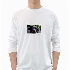 Rottweiler 2 White Long Sleeve T-Shirts