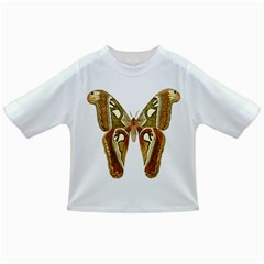 Butterfly Animal Insect  Infant/Toddler T-Shirts