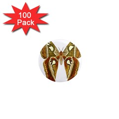 Butterfly Animal Insect  1  Mini Magnets (100 pack)
