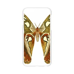 Butterfly Animal Insect  Apple Seamless iPhone 6/6S Case (Transparent)