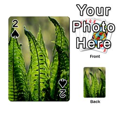Fern Ferns Green Nature Foliage Playing Cards 54 Designs