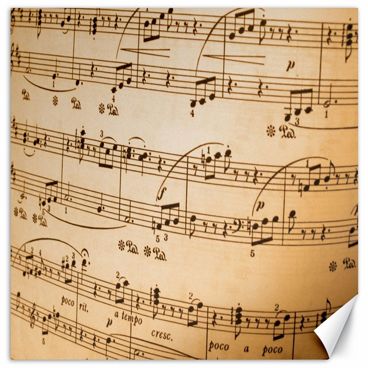 Music Notes Background Canvas 12  x 12