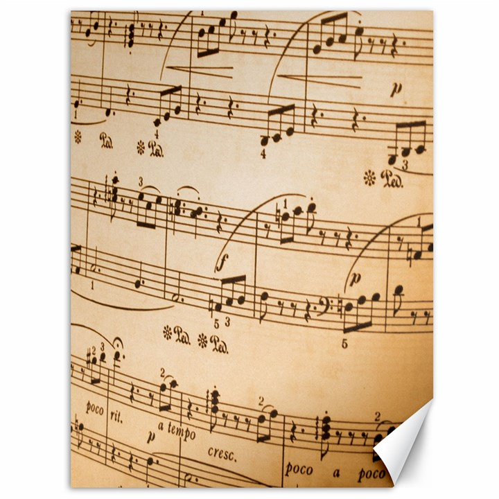 Music Notes Background Canvas 36  x 48