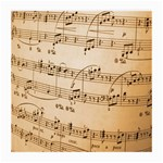 Music Notes Background Medium Glasses Cloth (2-Side) Front