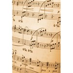 Music Notes Background 5.5  x 8.5  Notebooks Front Cover Inside
