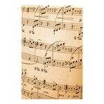 Music Notes Background Shower Curtain 48  x 72  (Small)  48 x72 Curtain