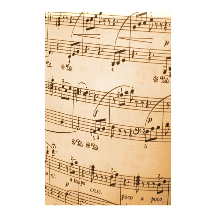 Music Notes Background Shower Curtain 48  x 72  (Small)