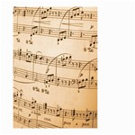 Music Notes Background Small Garden Flag (Two Sides) Back