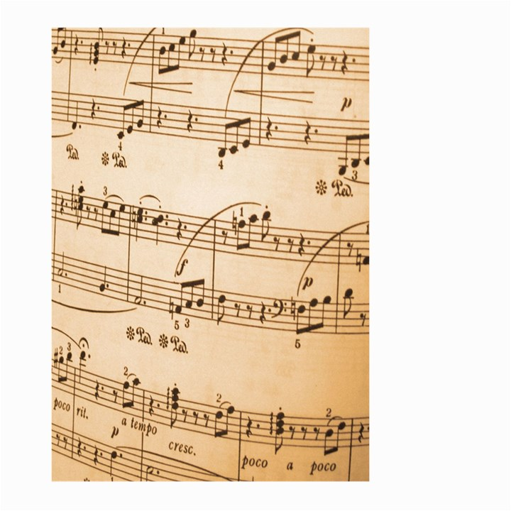 Music Notes Background Large Garden Flag (Two Sides)