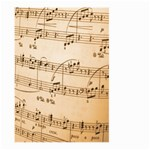 Music Notes Background Large Garden Flag (Two Sides) Back