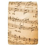 Music Notes Background Flap Covers (L)  Front