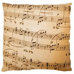 Music Notes Background Large Flano Cushion Case (Two Sides)
